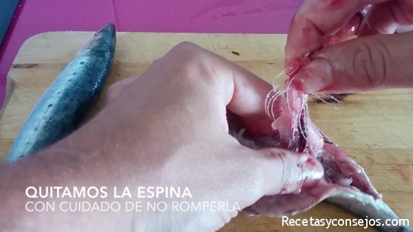 limpiar sardinas paso 4